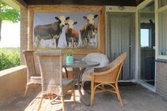 Appartement koeien terras