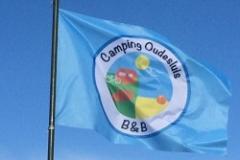 vlag thumpball